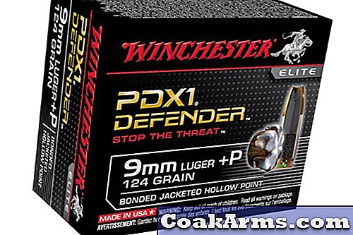 Winchester's PDX1 Defender Ammunition |  9 mm Luger