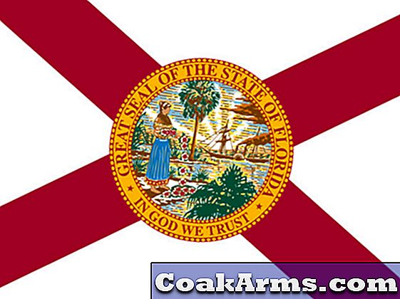Open Carry, Campus Carry Bills Advance In Florida Senate