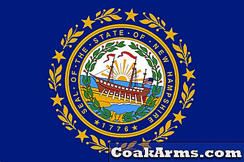 NH House Vetoes Bill on Gun Achtergrondcheques
