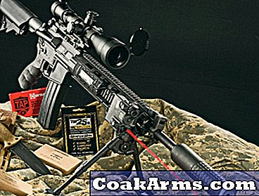 DPMS Panther Mark 12 5.56mm