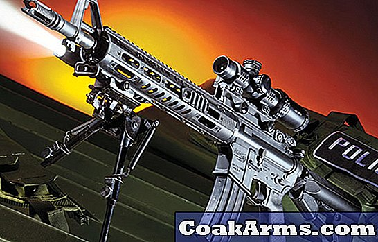 Gun Review: DPMS TAC2 5.56 Carbine