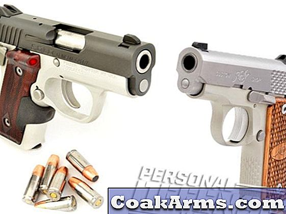 Kimber's Pocket Companions: de Solo Crimson Carry & Micro Raptor Stainless