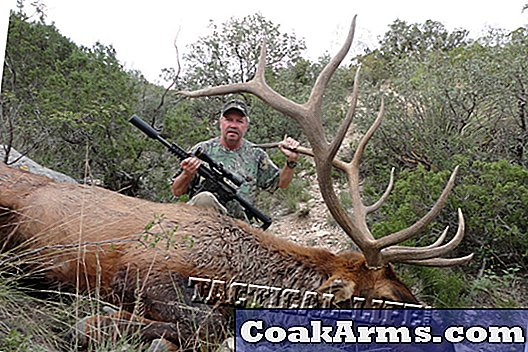Big Bulls of Big Bend: Sako 85 y Combat Recon