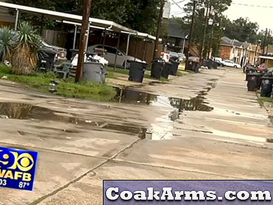 Would-be Armed Robber Shot & Killed van Concealed Carrier in Baton Rouge
